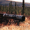 abandoned pipeline, Fox, AK, sep 1972