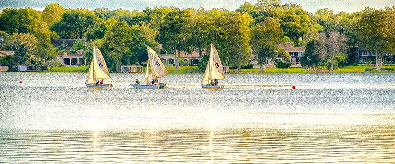 "WPP1155  ""Sailboats at Rolllins College"""