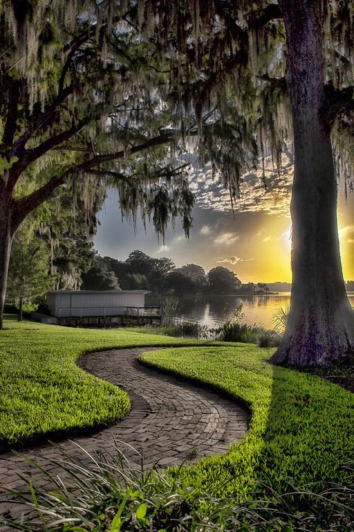 "WPP1161  ""Pathway to the Sun"""