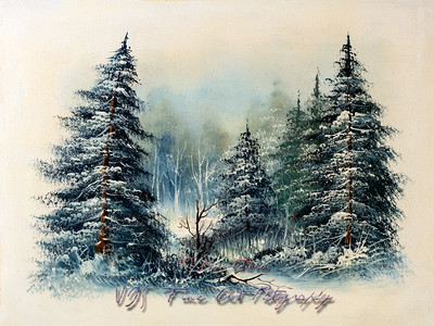 Painting Winter Evergreen Tree Background