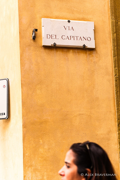 Siena: candid study #608