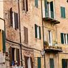 Siena: candid study #829