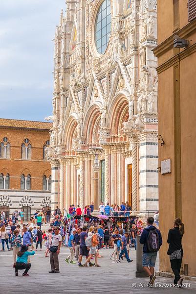 Siena: candid study #615