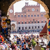 Siena: candid study #118
