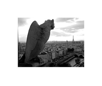 Gargoyle over Paris, Notre Dame Cathedral