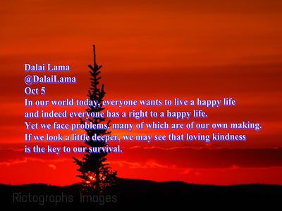 Dalai Lama, Quote, 2020