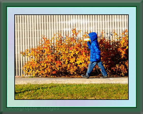 Enjoying Our Weather Walking In Blue, Rictographs Images