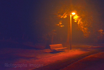 The Bench At Night