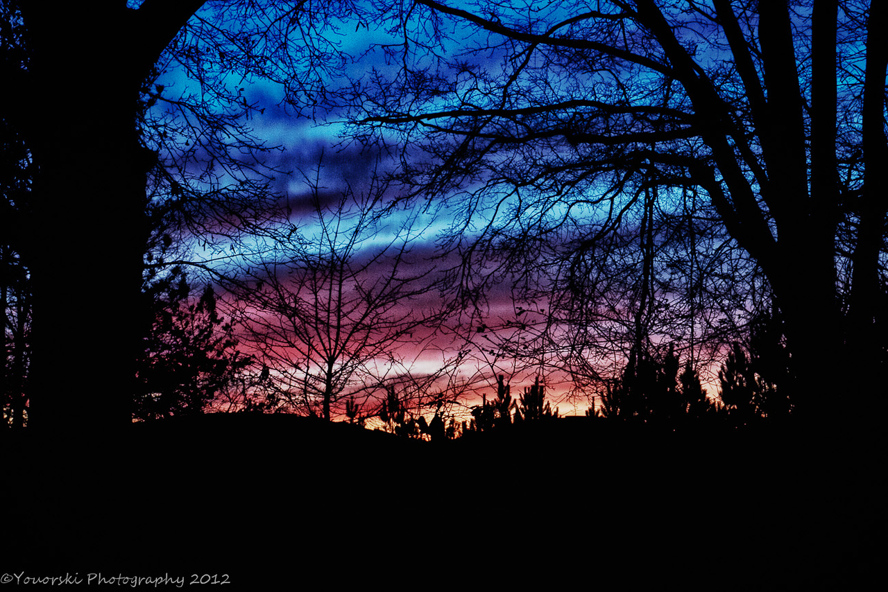 Over the fence sunrise