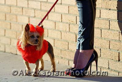 AlexKaplanPhoto-25-04544