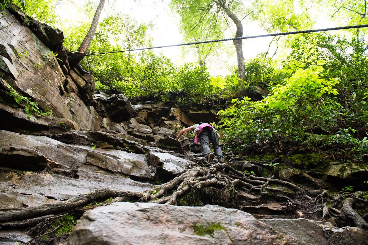 Cable Trail, Cane Creek Falls, North Carolina