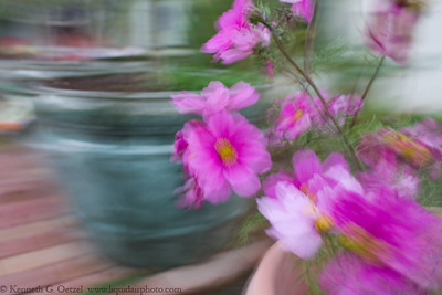 "Playing around with motion blur while shooting the for the ""Panning Blur"" assignment."