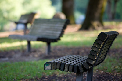 "Shallow DoF shot for the ""DoF that Bench"" assignment."
