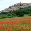Trevi, Province of Perugia