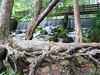 Meremac Springs Park