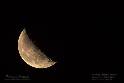Waning Crescent Moon