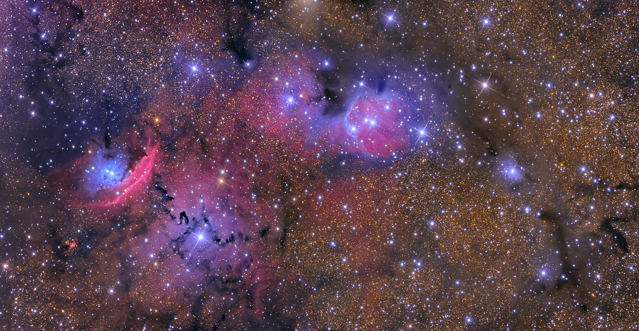 NGC 6559 and Friends