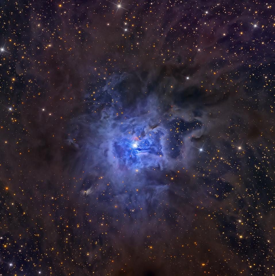 NGC 7023 The Iris Nebula