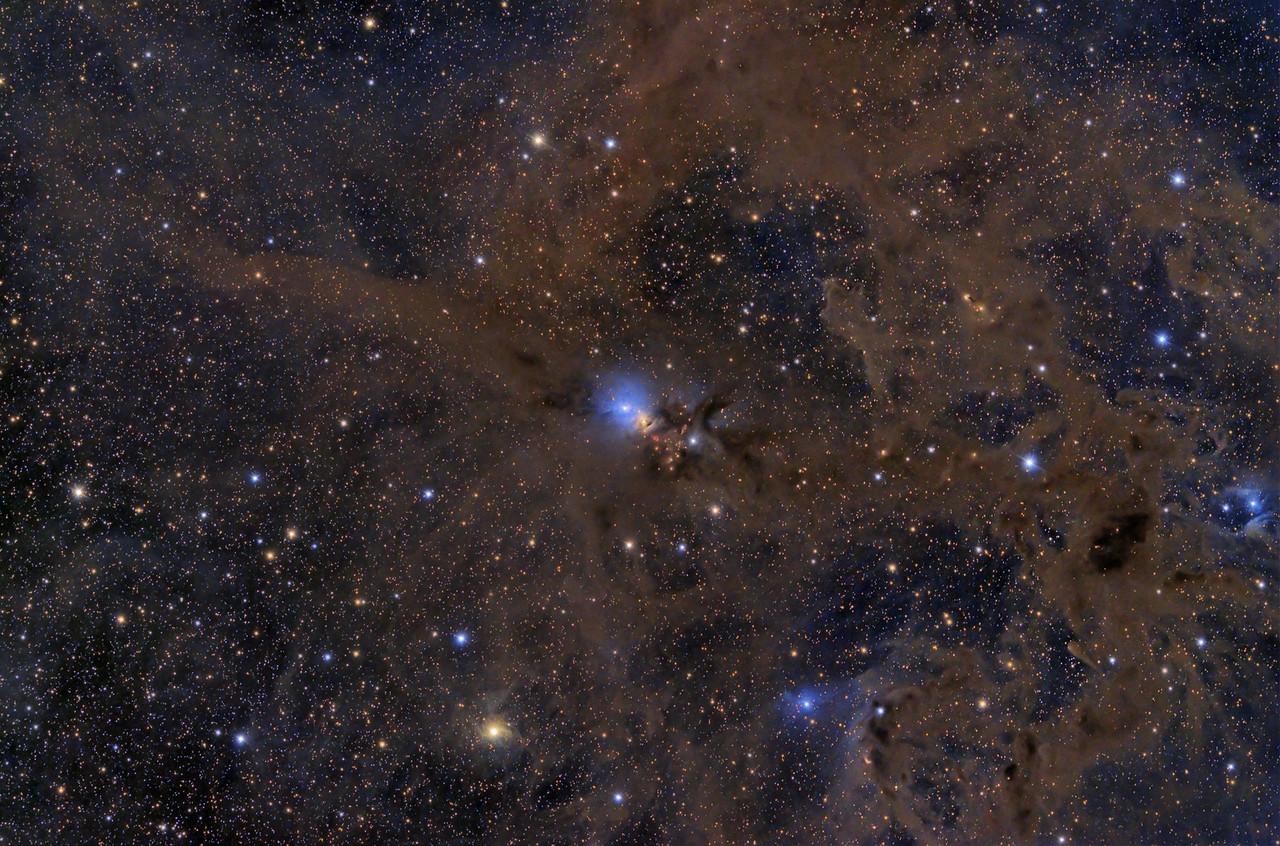 NGC 1333 Wide