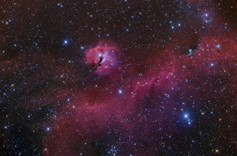 IC2177 The Seagull Nebula in Monoceros. Located about 3700 light years away. Shot from NMSkies Remote Observatory on Dec 2012 ASA N10 Astrograph at F3.59 FLI Microline 11002OSC -40C Paramount MX PI, PS6