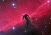 IC 434 The Horse Head Nebula