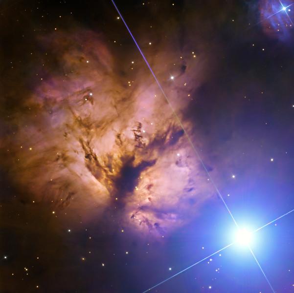 NGc 2024 The Flame Nebula