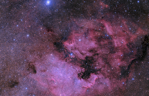 North American and Pelican Widefield