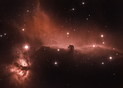 The Horse Head Nebula