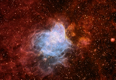 NGC346 Nebula in the LMC
