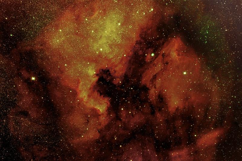 North America Nebula (NGC7000 )