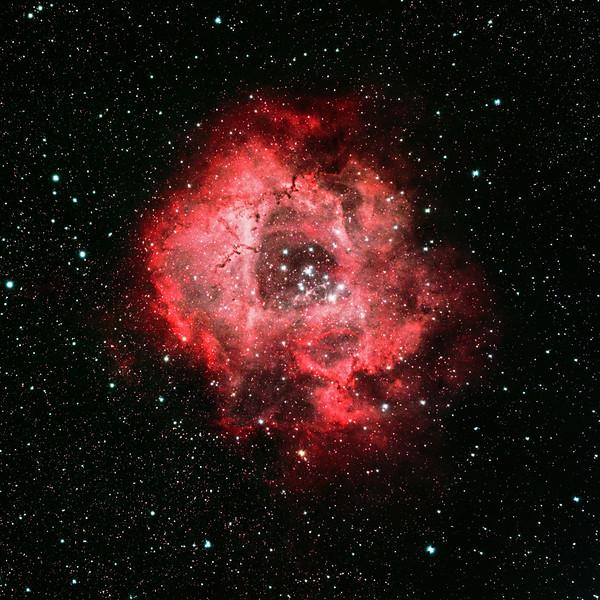 Rosette Nebula (NGC2244)