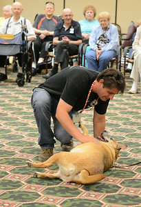 Greg Willey, from Friendship APL, shows off Carmen's skills at Wesleyan Village onAug. 15.  Carmen is one of the dogs up for adoption at Friendship APL. KRISTIN BAUER   CHRONICLE