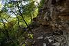"Steep Trail - Barton Creek Greenbelt Austin, Texas<br /> <br /> My Facebook Blog - <a href=""https://www.facebook.com/pages/Mark-Everett-Weaver-Photographer/163004207059413?ref=hl"">https://www.facebook.com/pages/Mark-Everett-Weaver-Photographer/163004207059413?ref=hl</a>"