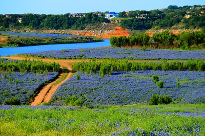 Muleshoe Bend Rec Area 4.20.15