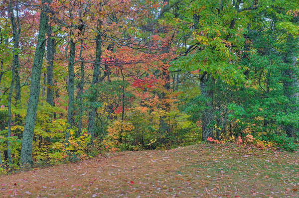 0810Fall111_07_10_09_08_tonemapped