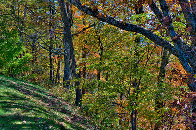0810Fall091_87_90_89_88_tonemapped2-2