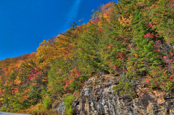 0810Fall070_66_69_68_67_tonemapped2-2