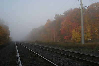 Foggy morning on tne tracks