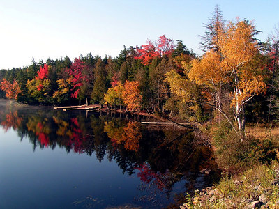 second pd, 8am, hwy 3, 4 miles east of saranac lake, oct 7, 2004ad
