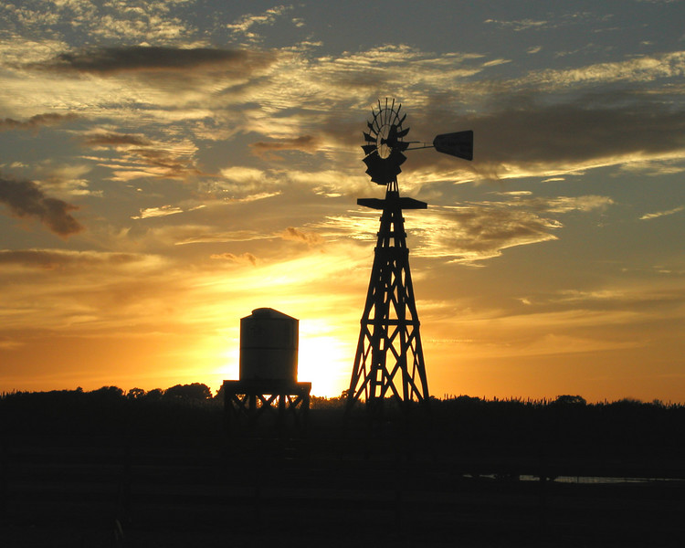 Just your basic texas windmill at sunset.