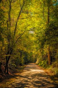 Tallulah Trail