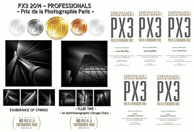 "<b>PX3 2014 – PRIX DE LA PHOTOGRAPHIE DE PARIS - PROFESSIONALS</b>  – <b>1st Prize - GOLD</b>  for the series <b>""EXUBERANCE OF STRINGS"" </b>- Category <b>Architecture Advertising PROFESSIONALS</b> – <b>2nd Prize - SILVER</b>  for the series <b>""EXUBERANCE OF STRINGS"" </b>- Category <b>Fine Art Architecture  PROFESSIONALS</b> – <b>3rd Prize - BRONZE</b>  for the series <b>""FLUID TIME - An (en)Visionographic Chicago Story"" </b>- Category <b> Fine Art  Architecture PROFESSIONALS</b> – <b>HONORABLE MENTION</b>  for the series <b>""EXUBERANCE OF STRINGS"" </b> – <b>HONORABLE MENTION</b>  for the series <b>""FLUID TIME - An (en)Visionographic Chicago Story"" </b> Details http://blog.juliaannagospodarou.com/first-second-third-prize-px3-2014-professionals/"