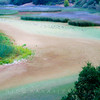 Lake Chabot RP