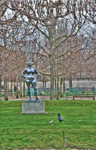 SOME ART IS FOR THE BIRDS-PARIS, FRANCE 2012