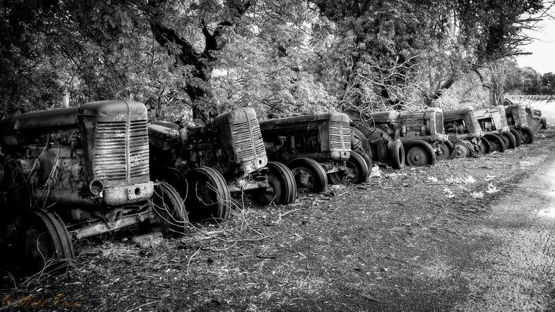 the Tractor Graveyard
