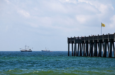 Skimmers and the Pensacola Beach Pier.