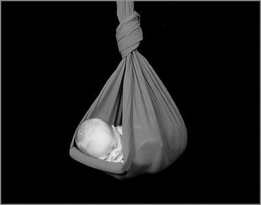 2118_110810_185533_7DL_LR hanging baby 14x11 BW