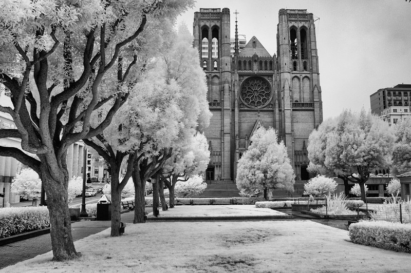 Grace Cathedral4