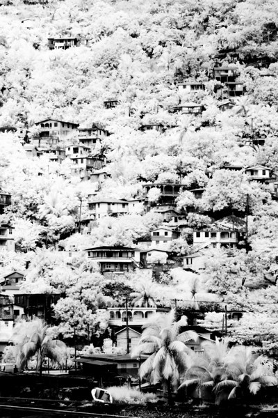 Dominica: Hillside houses (infrared)