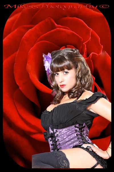 BabyDoll Red Rose